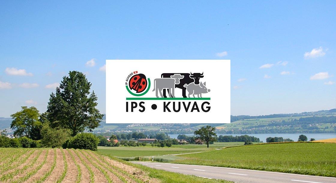 IPS Kuvag