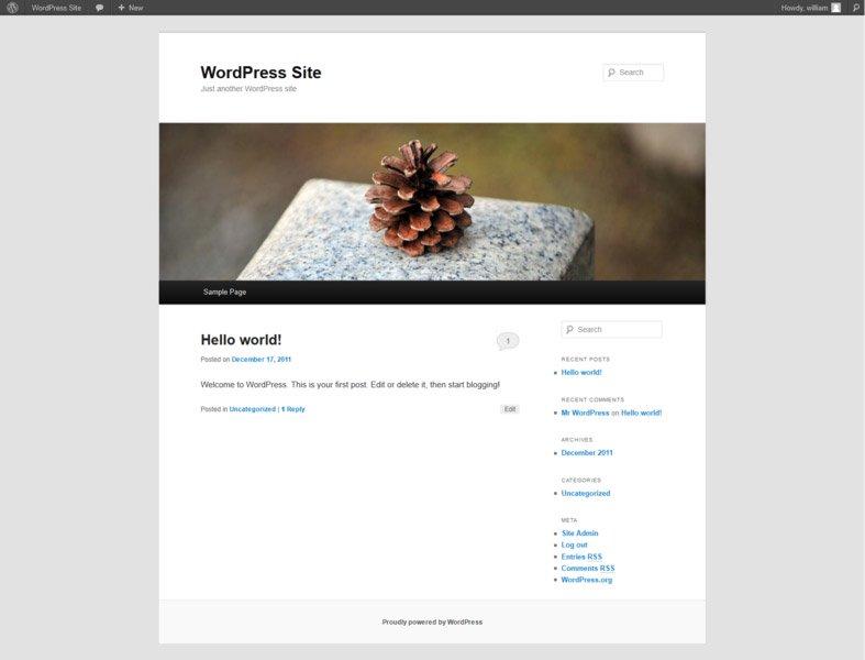 Wordpress:Frontend