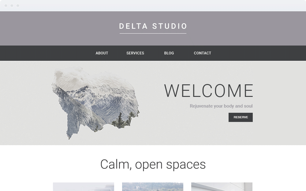 Screenshot Design Delta Studio